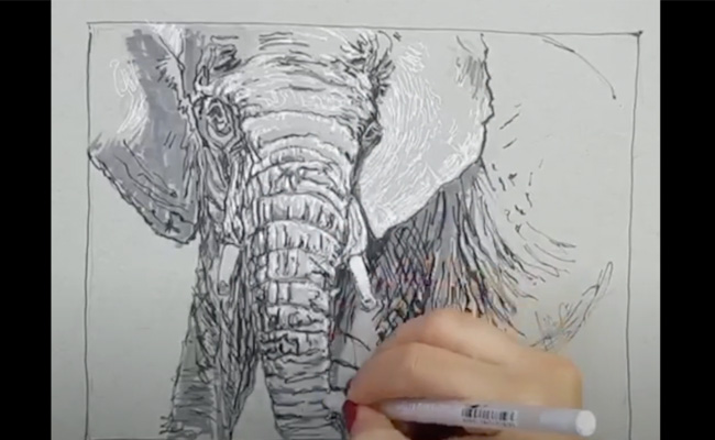 الرسم بالأقلام الحبرية